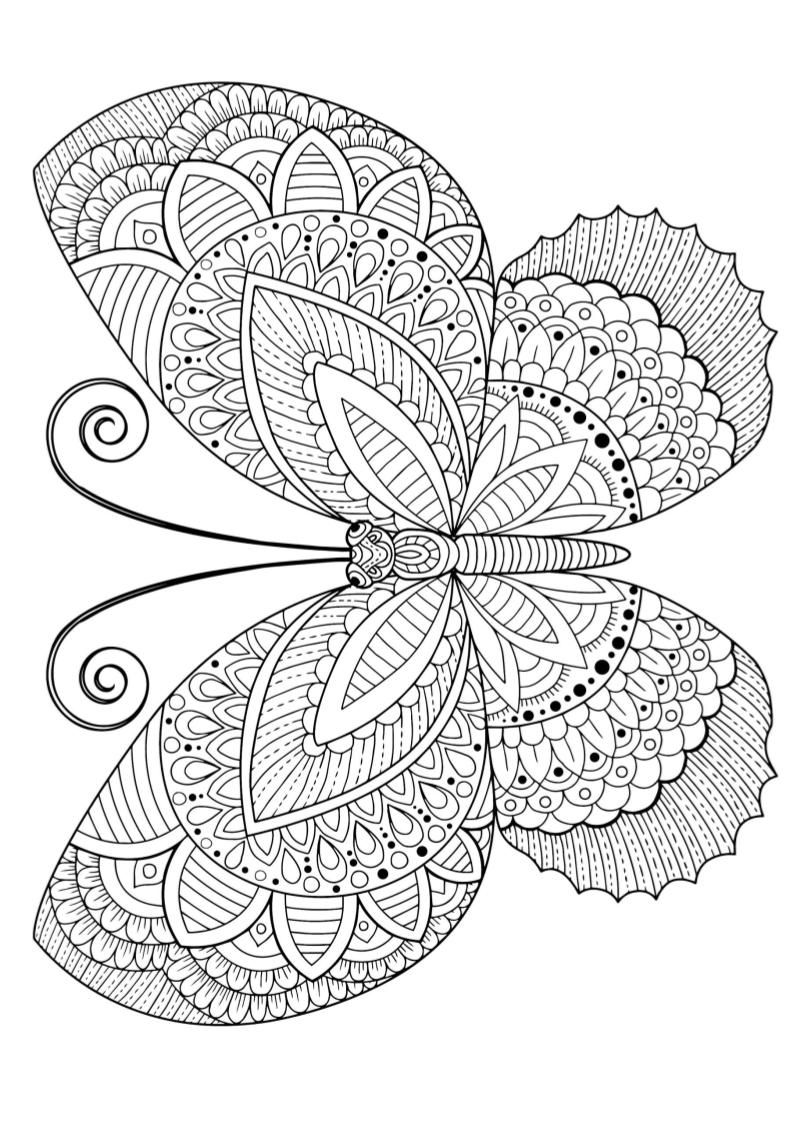Mindfulness Coloring Mandala Coloring Pages Abstract Coloring Pages Butterfly Coloring Page [ 1121 x 793 Pixel ]