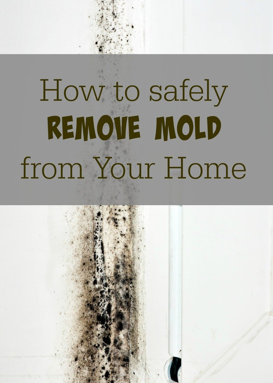 How To Safely And Effectively Remove Mold From Your Home Works On Black Spores Other Mildew Issues This Is Effective Can Save You