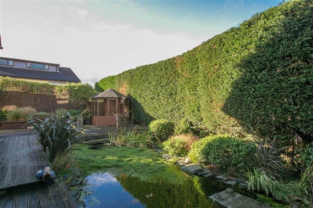 4A Lyndhurst Gardens, Bangor #garden (With images) | Small ...