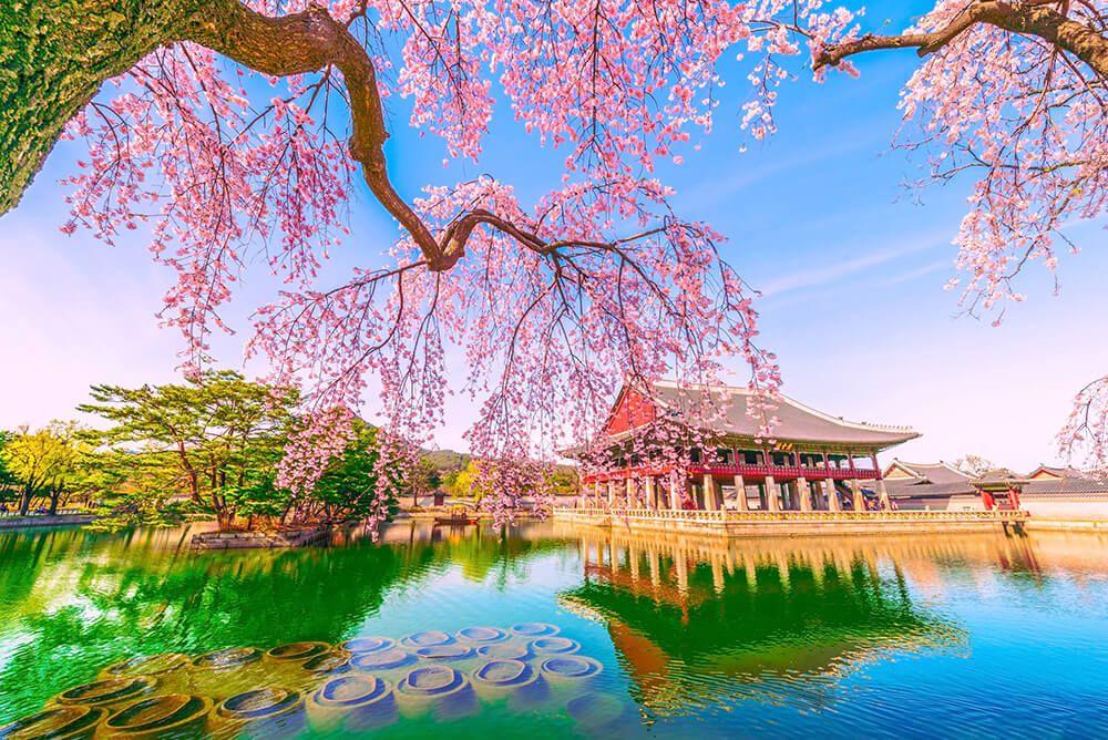 Lo mejor de Seúl, la capital de Corea del Sur — Mi Viaje | Corea del sur,  Corea, Piramides de egipto