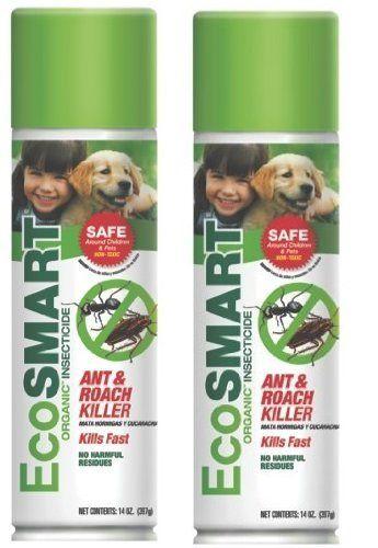 Pin On Pet Safe Ant Killer