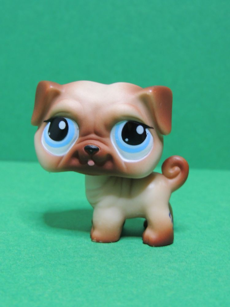 1312 Chien Dog Pug Carlin Brown Blue Eyes Lps Littlest Pet Shop