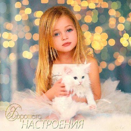 Анимация Девочка сидит в белом платье с белой кошкой на руках на размытом  фоне огней, Хорошего настроения, A. pl (© Natalika), добав…   Анимация,  Фотографии, Баннер