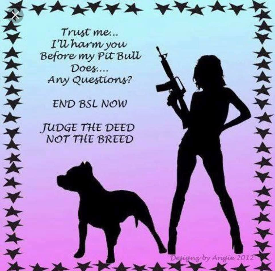 Pin By Tracy Williams On Just Sayin Pit Bull Love