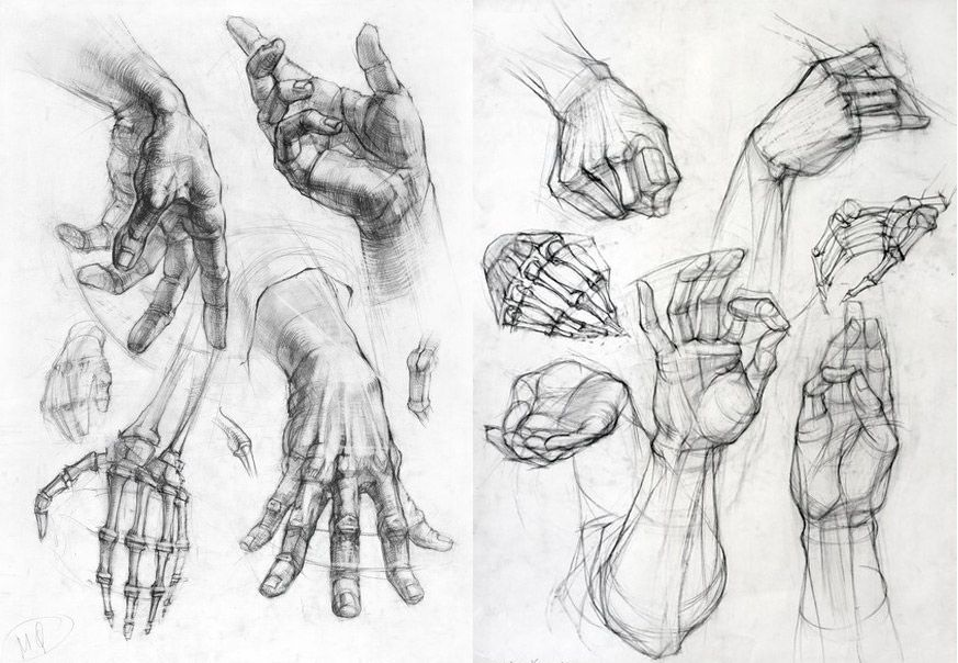 11-3-Drawing-Hands.jpg (873×604) | Anatomy (hands) | Pinterest ...