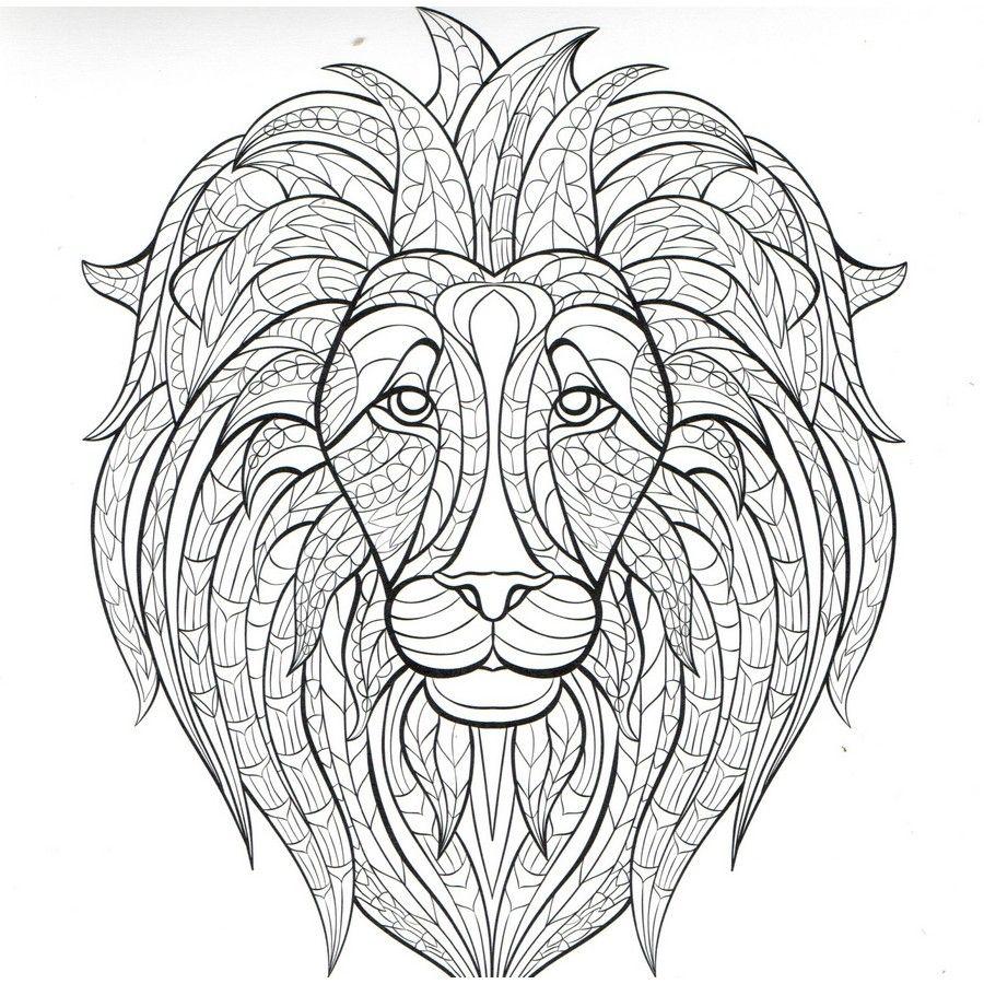 Delantaarn Natuurlijk Lion 900px Jpg 900 900 Lion Coloring Pages Animal Coloring Pages Mandala Coloring Pages
