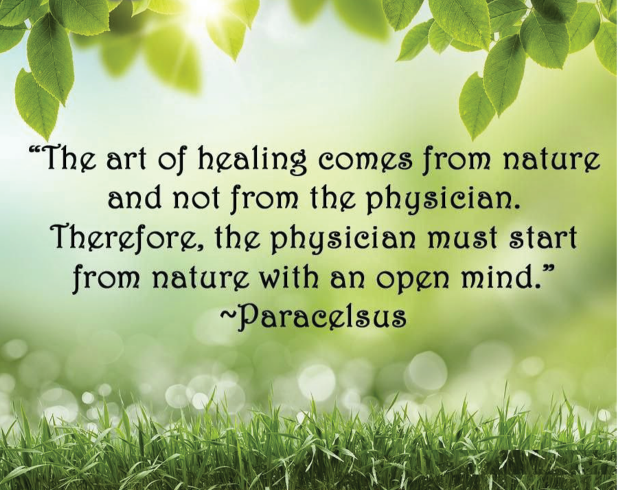the art of healing comes from nature not from the physician
