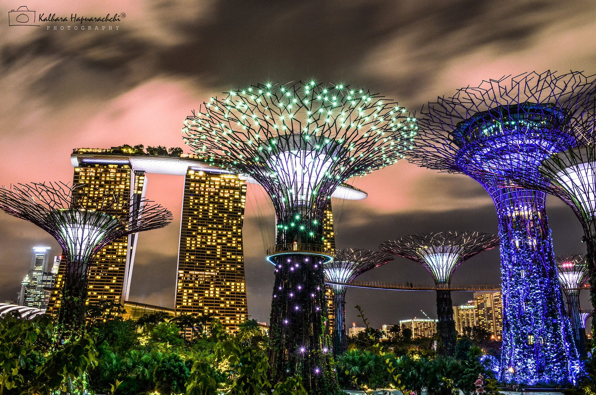 httpsflickrppnbsk9 marina bay sands garden by the bay at night ideal time to visit gardens by the bay in singapore is when night falls - Garden By The Bay Music