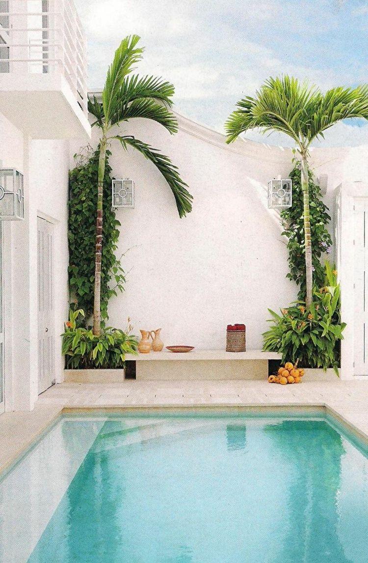 piscine pour petit jardin dallage pierre naturelle palmiers style exotique