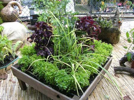 I love this planter box!