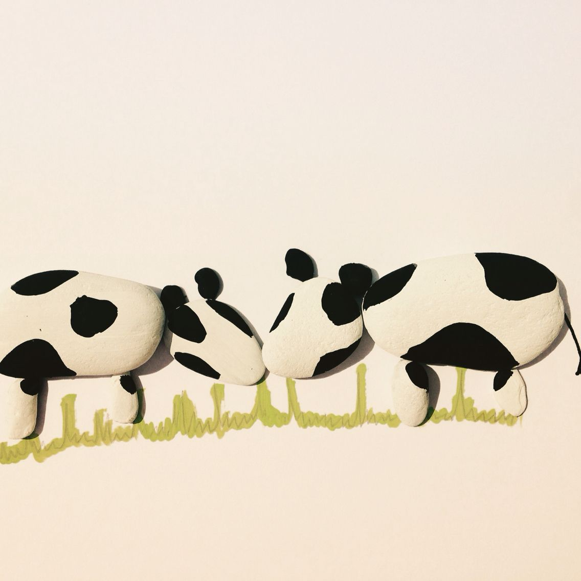 caru ti i love you cows pebble art baby shower gifts pinterest