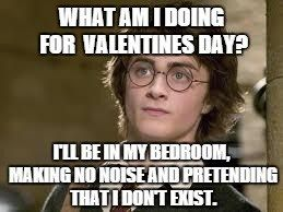 Single Life Funny Meme : What am i doing for valentines day? i'll be in my bedroom making no