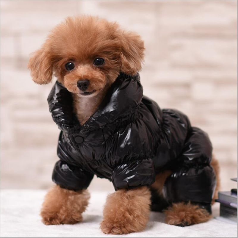 2c38d2b5736 Pet Dog Clothes For Small Dogs Coat Christmas Winter Warm Coats Jackets  Thicken Yorkie Dog Puppy