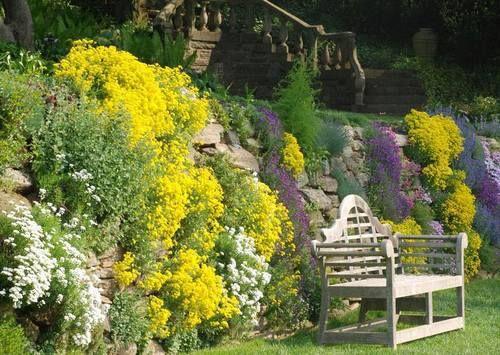 Flowering Stone Wall | Gardening | Pinterest | Stone walls, Gardens ...