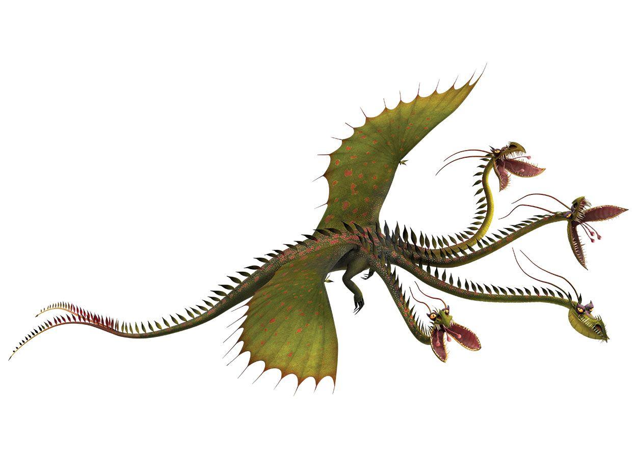 Bildergebnis Für Drachenreiter Von Berk Drachen Dreamworks Dragons