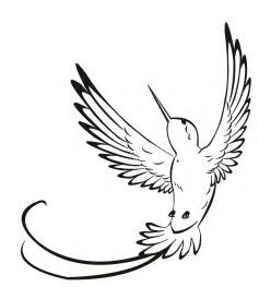 Image Result For Simple Hummingbird Tattoo Designs Hummingbird