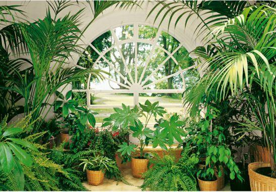 Fototapete wintergarten ~ Fototapete papiertapete wintergarten