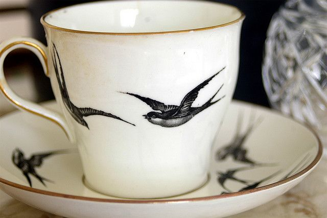 Cup of Swallows//