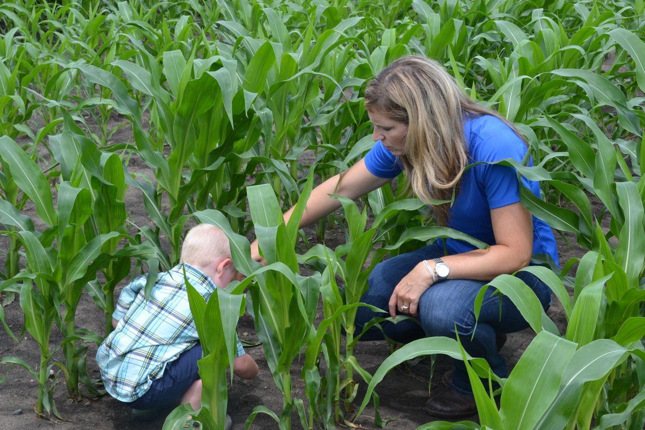 73e371d4c04a8a5b6211ca89e3b13cc0 - Texas Organic Farmers And Gardeners Association