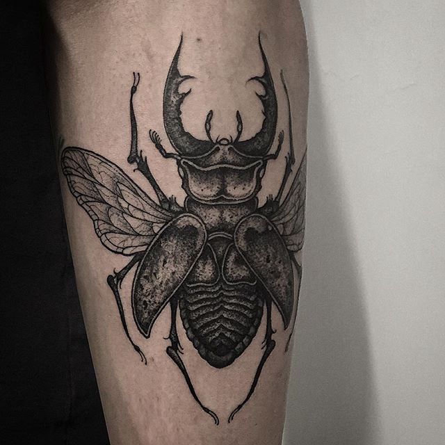 Pin by Chris Brewer on Men's forearm tattoo | Beetle ...