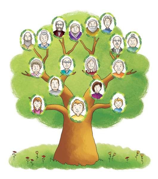 Resultado de imagen para arbol genealogico de todo un - Diseno arbol genealogico ...