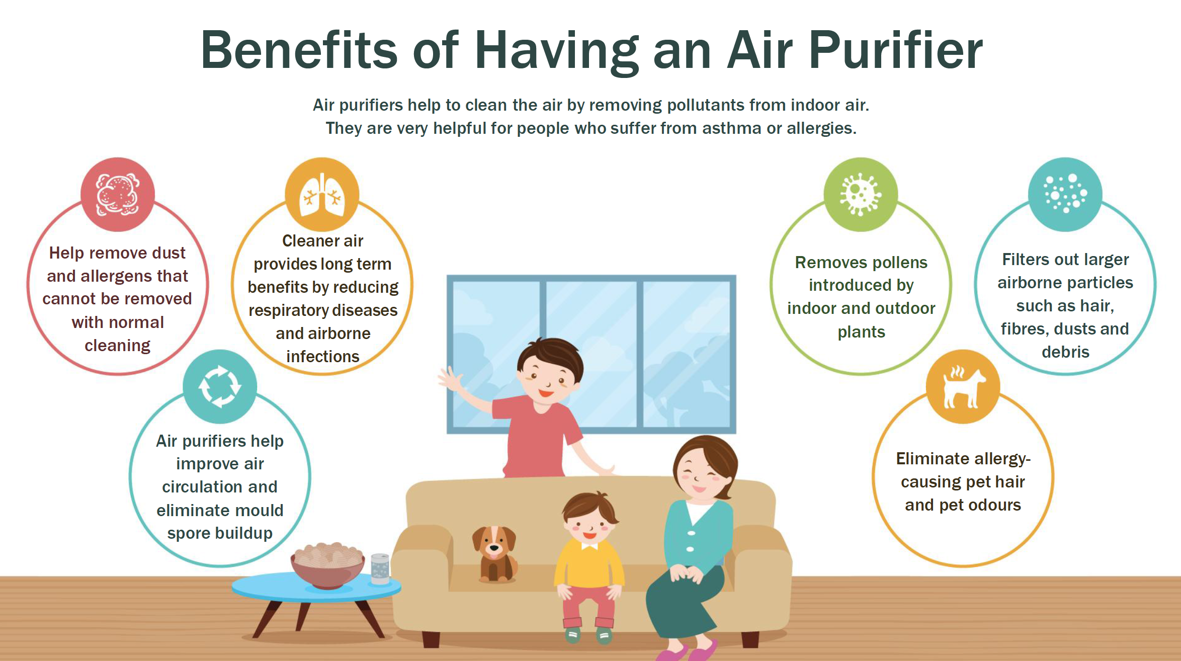 Image result for image of Removes Pollutants from Air
