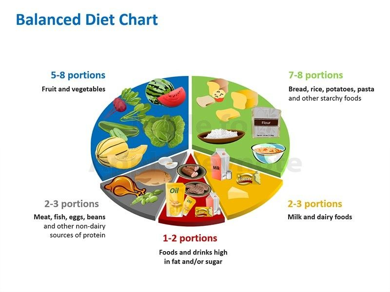 Balance diet chart to ensure a healthy food habit pinterest