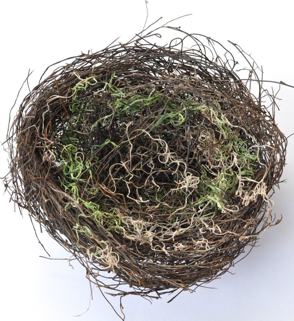How to Make a DIY Bird Nest {In Minutes} (With images