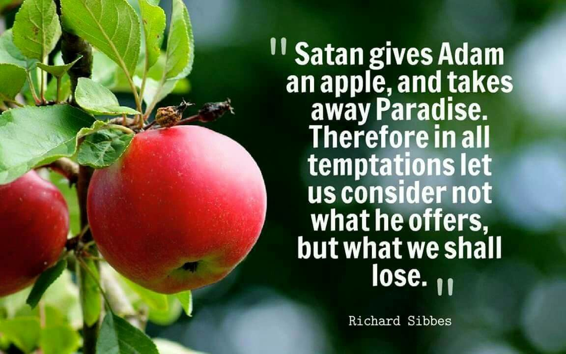 Christian Quotes Richard Sibbes Quotes Temptation Sin Temptation Quotes Sin Quotes Happy Quotes Smile
