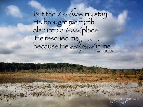 Day 3: Psalm 18:19