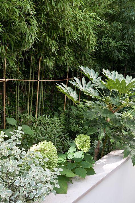 Terrasse en rez de jardin paris 16 jardin jardin paysager jardin d 39 ombre et jardins - Rez de jardin paris ...