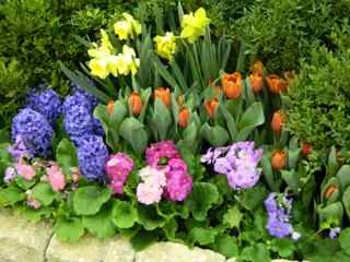 Nice spring flower bed outdoor spaces pinterest spring flowers nice spring flower bed mightylinksfo