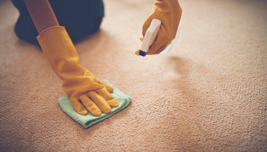 Teppich Reinigen Hausmittel
