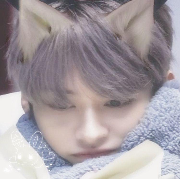 Pin by % an4gemi ✧·͡˔·ོɁ̡̣̣ on ☆ soft soft !? | Cat girl, Catboy, Kids icon