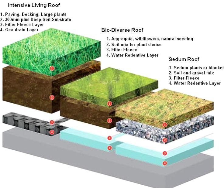 Living Roof Construction Is A Sedum Roof Covering Best For A Diy Green Roof In 2020 Sedum Roof Green Roof Living Roofs