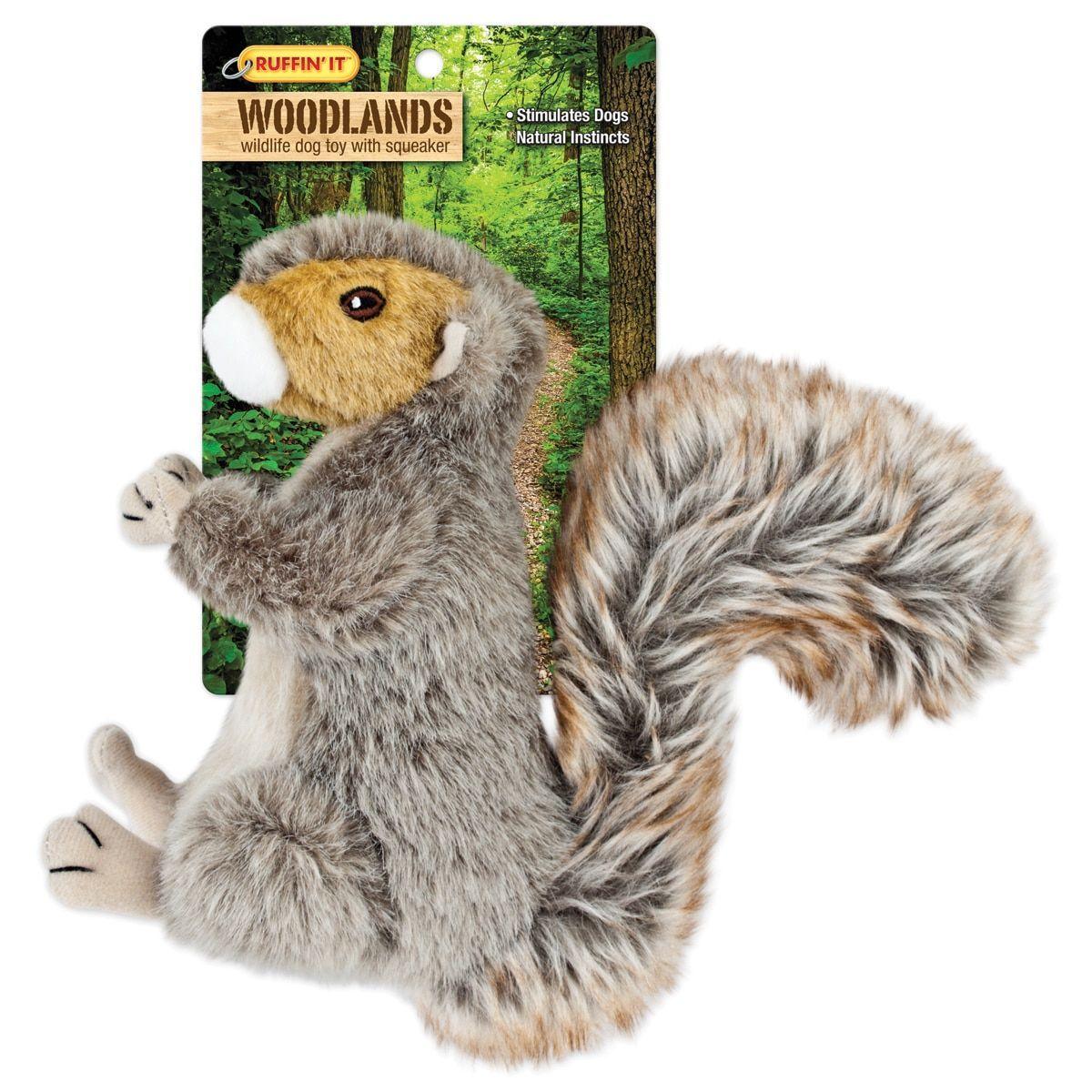 Pin On Squirrel Stuff