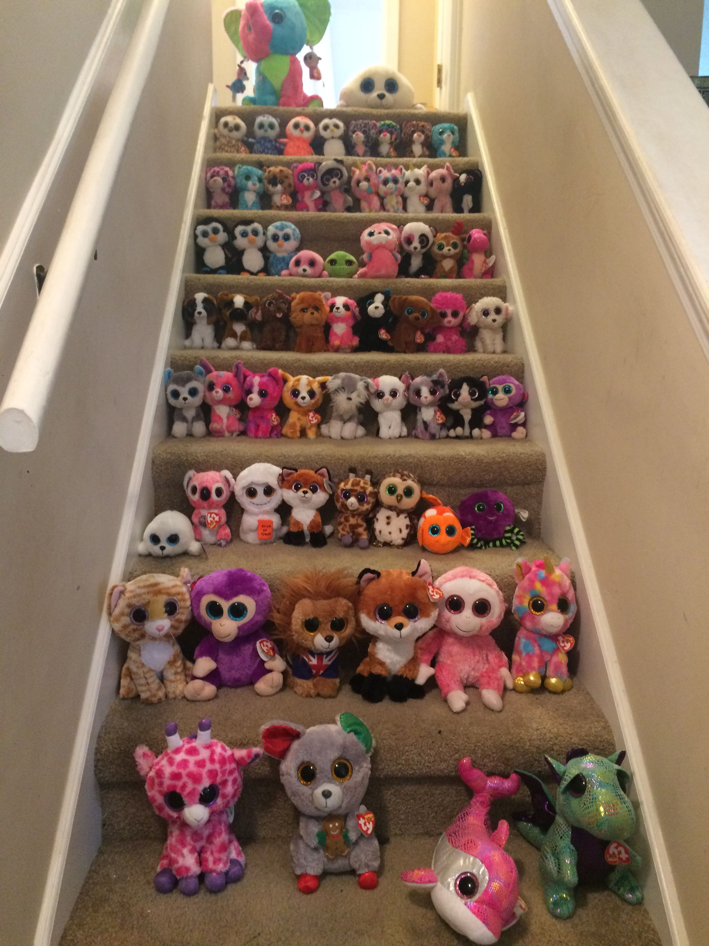 My beanie boo collection  c72361073139