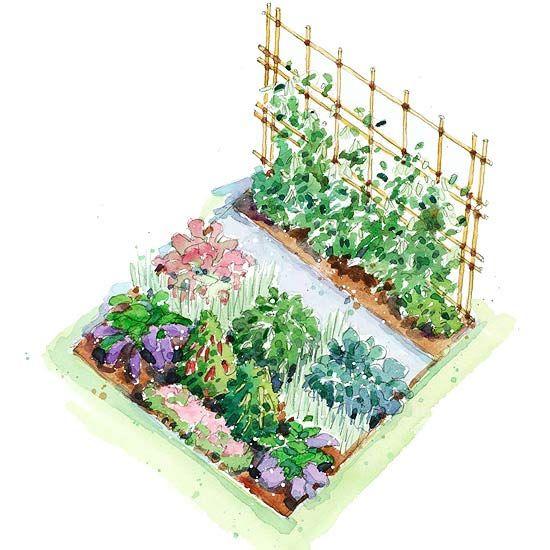 Asian inspired vegetable garden plan garden planning for Vegetable garden plot ideas