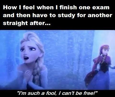 Top 27 Funny Memes About Studying Funny Study Quotes Studying Memes Procrastination Memes