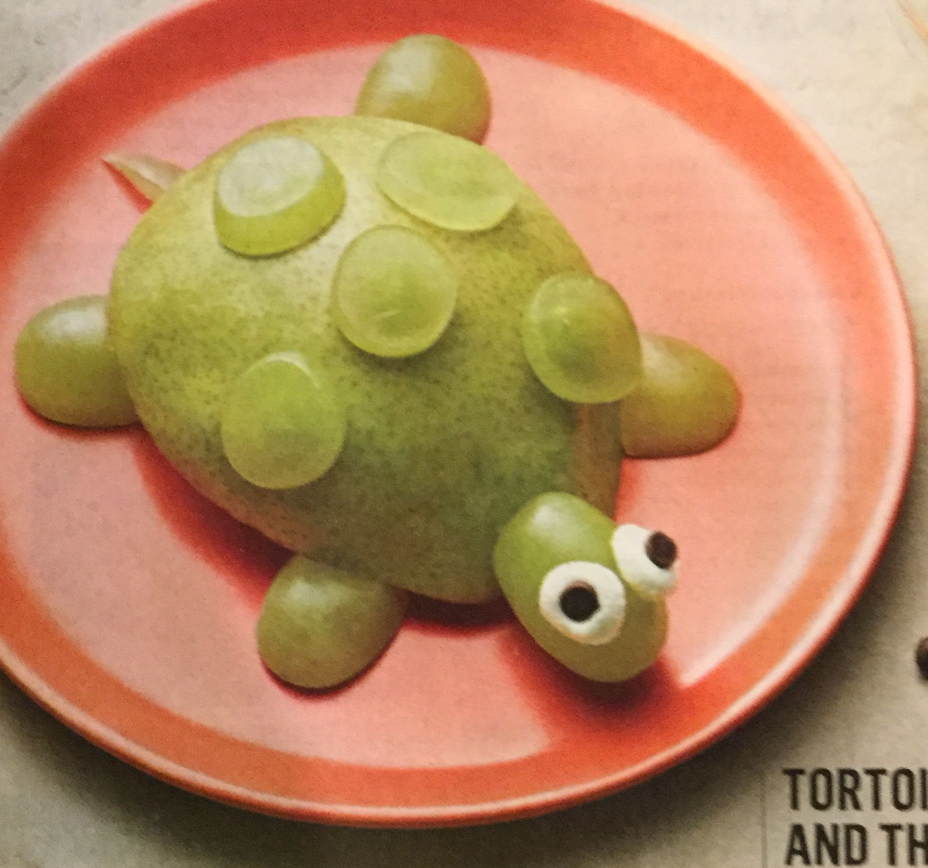 Tortoise and the Pear