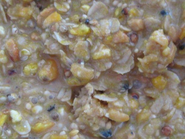 No Melt Suet For Birds Recipe Recipes Bird Suet Food