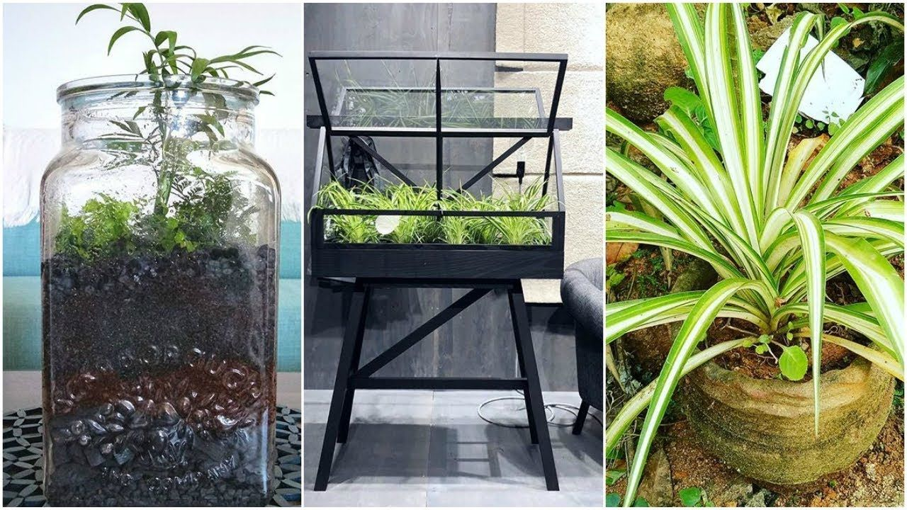 Latest Classic Home & Garden Creative Design | Home & Garden ...