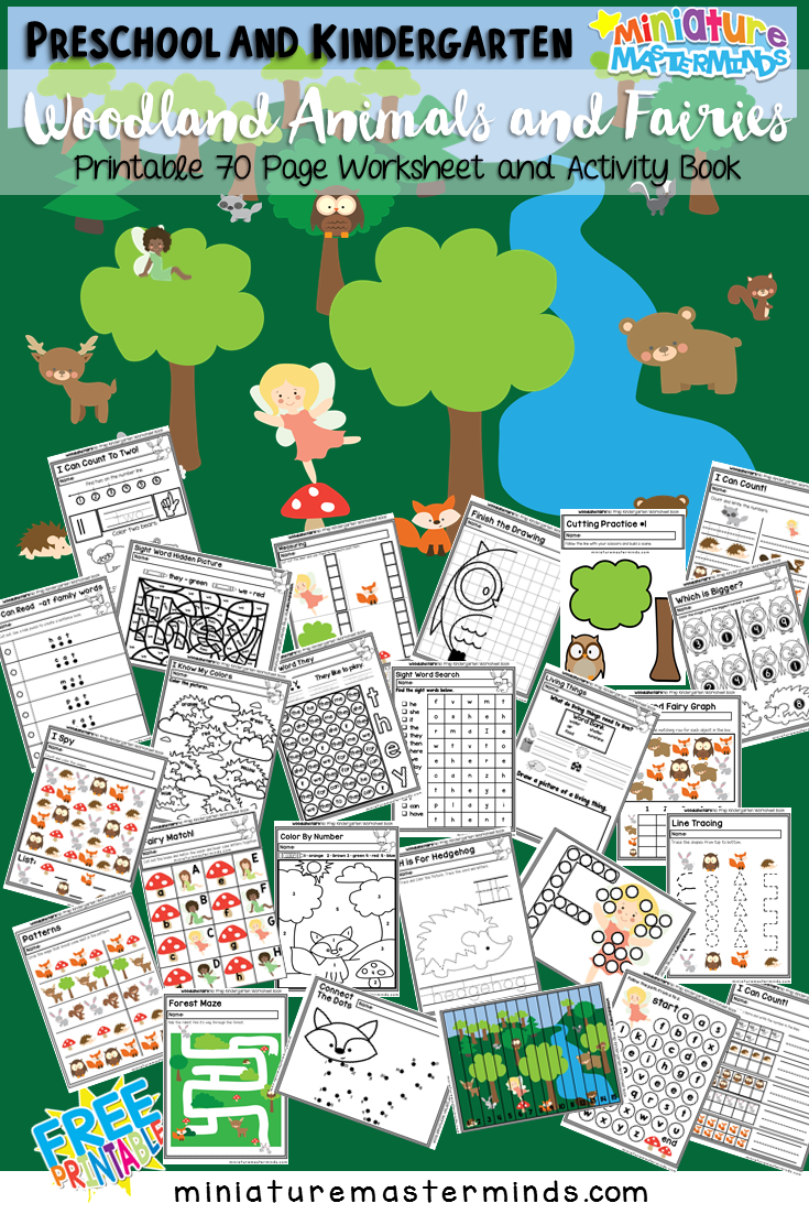 Preschool and Kindergarten Fairy Wood Land Creatures Worksheet and ...