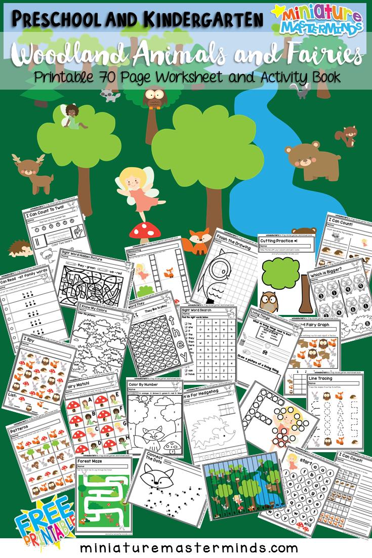 Preschool and Kindergarten Fairy Wood Land Creatures Worksheet and ...