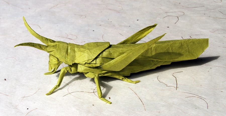 Perched Locust Origami Paper Art Cardboard Sculpture Origami Art