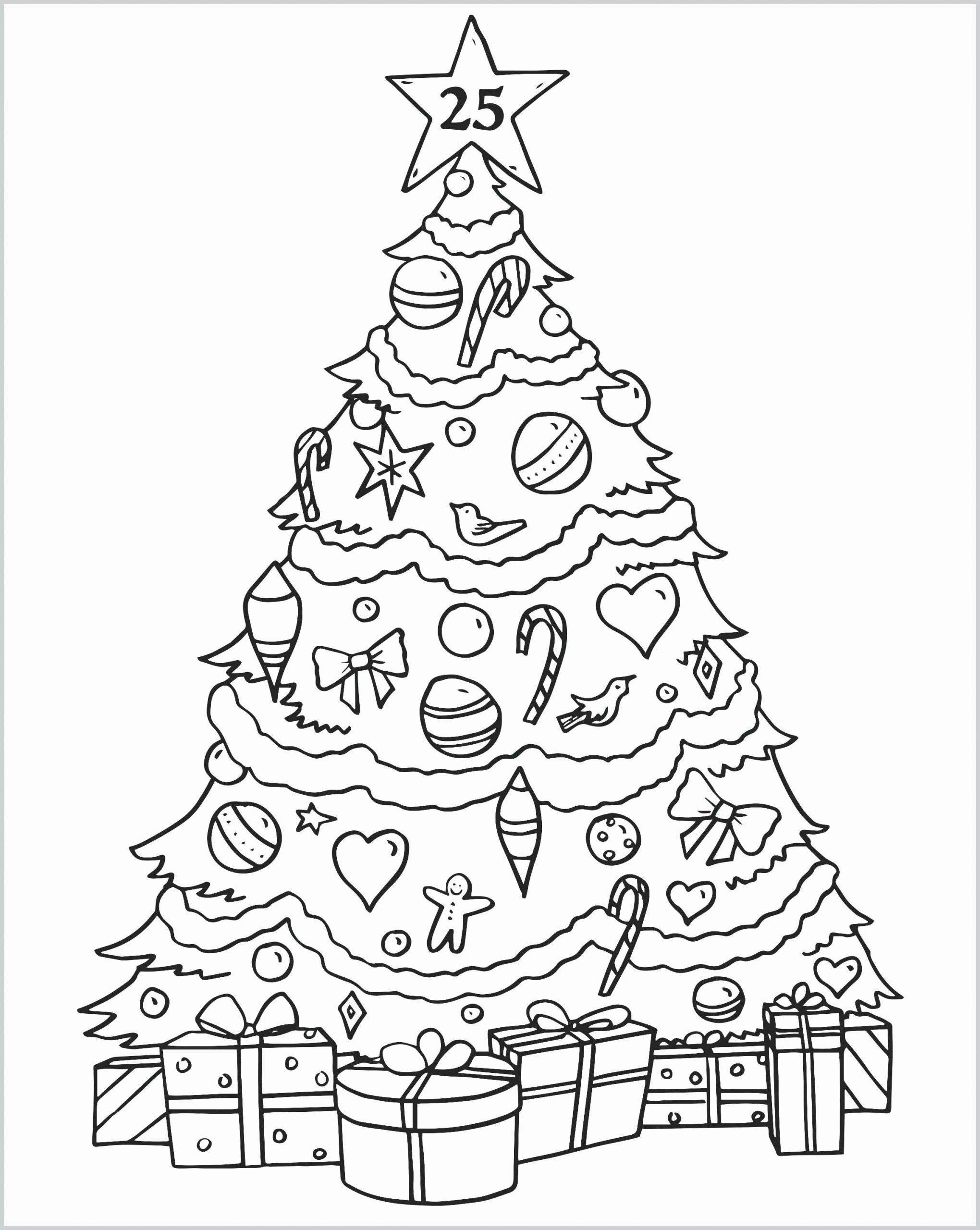 T For Tree Coloring Page Best Of Palm Tree Coloring Pages Printable Codeadventures Christmas Tree Coloring Page Tree Coloring Page Christmas Tree Drawing