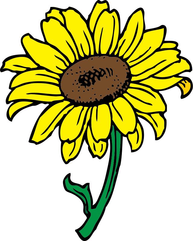 Bouquet Of Flower Outline Clip Art Free