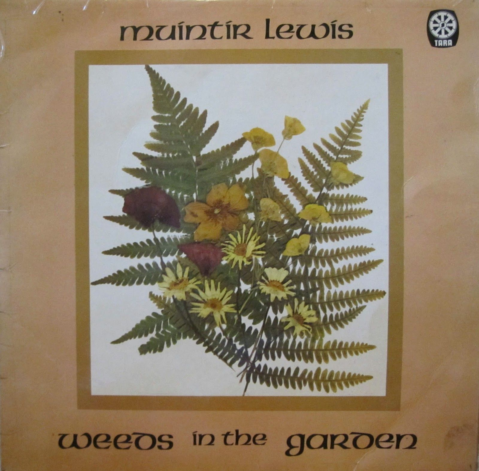 Celtic Vital Signs [Reels, Rhymes & Rebellion]: Muıntır Lewis ...