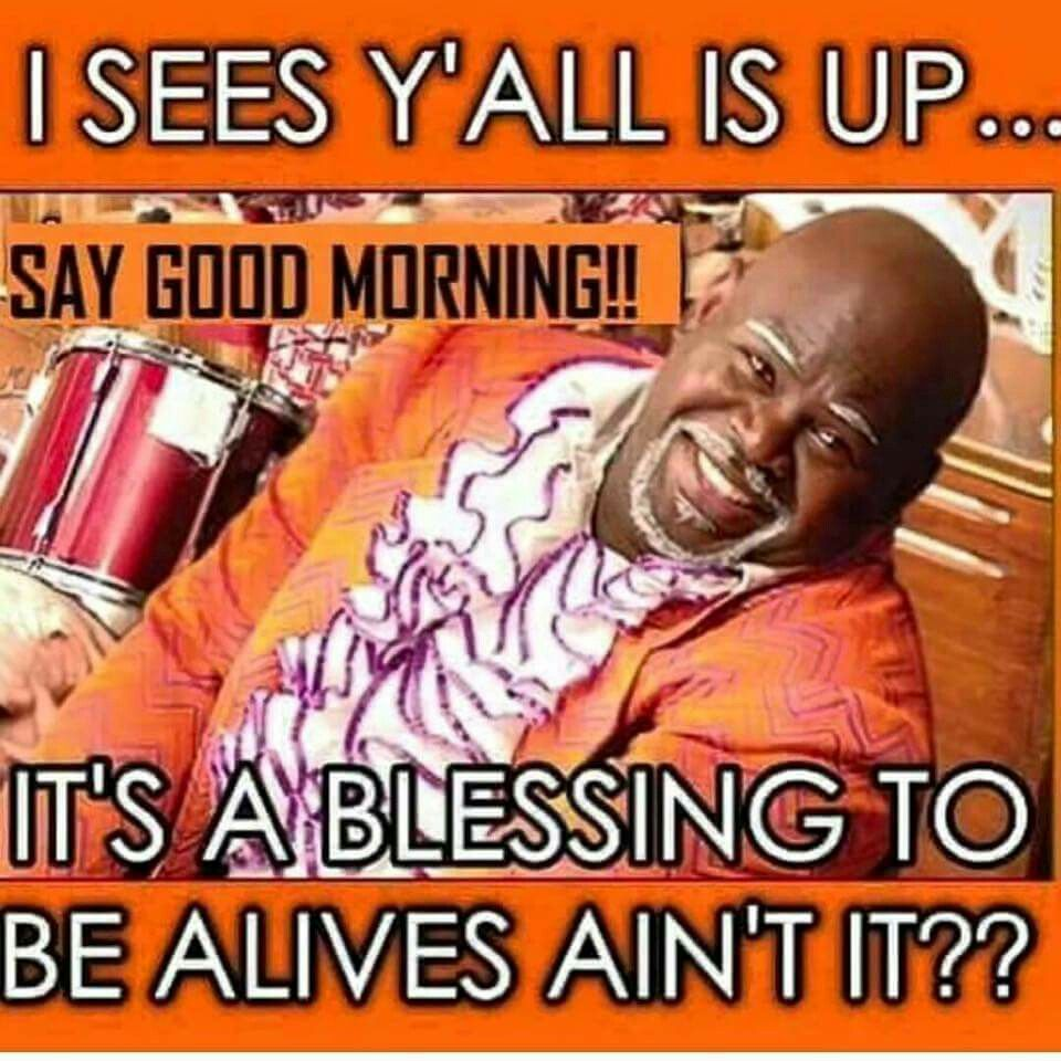 Everyone Up Funny Good Morning Quotes Morning Humor Good Morning Meme