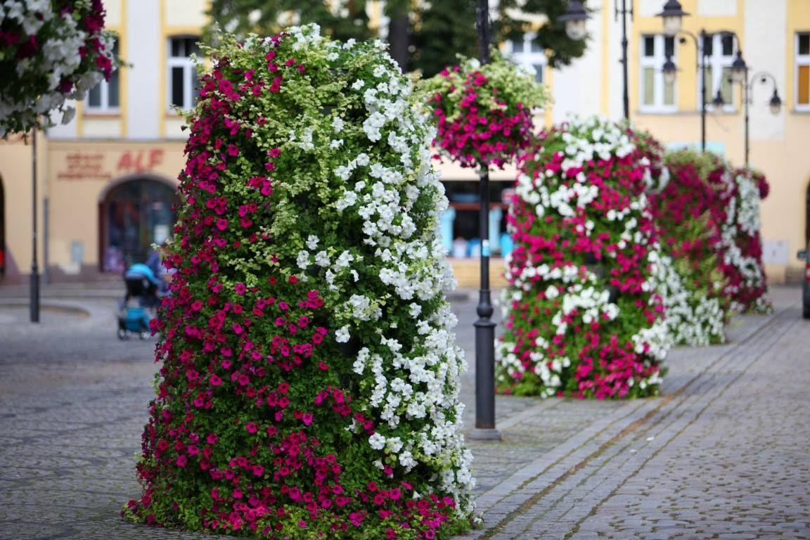 bunte Blumentürme